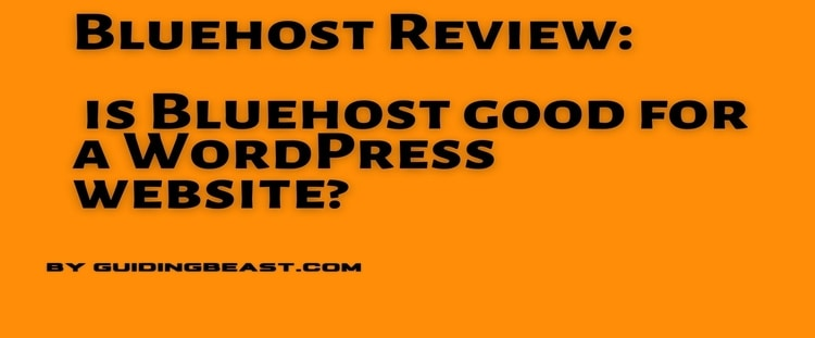 is Bluehost good for a WordPress website